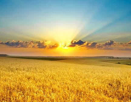 Утро планеты - http://www.mymngtv.space