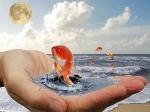С таким же успехом рыбак может размечтаться о вкусной ухе при виде «золотой рыбки»... - http://gallery.forum-grad.ru