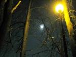 Лунная ночь ранней весной.  - Фото: Пресс-центр ЗоВУ, 2012